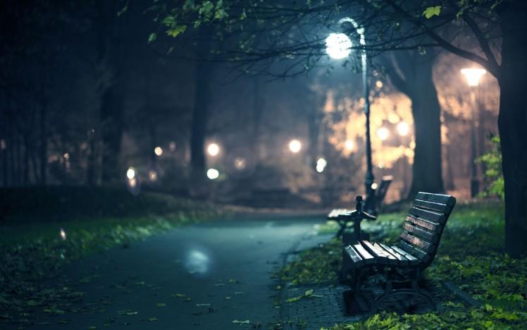 night-walk-park-hd-wallpaper