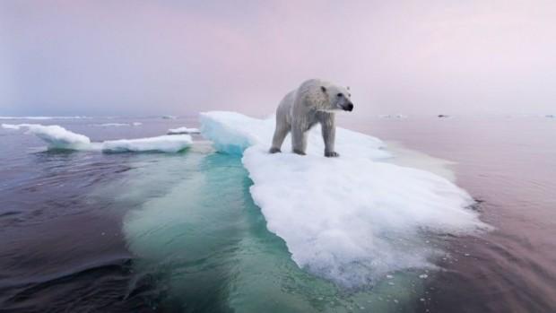 Il-riscaldamento-globale-può-superare-i-2-°C-entro-il-2050-3-e1453724506151