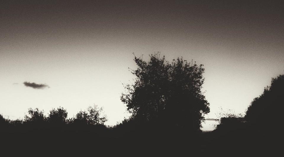 Di notte, sulle ali dei sogni