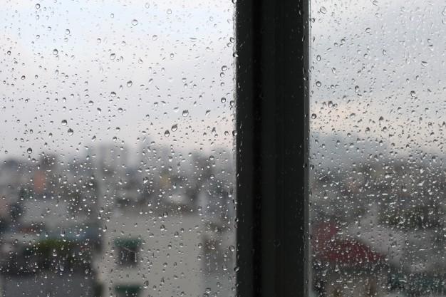 """Il sentire comune della pioggia: """"La mia estenuante ricerca della bellezza"""""""