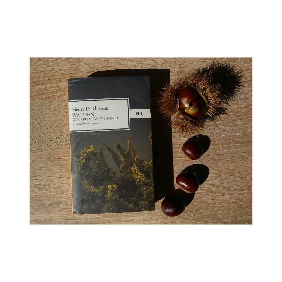 Ti consiglio un libro: Walden ovvero la vita nei boschi.