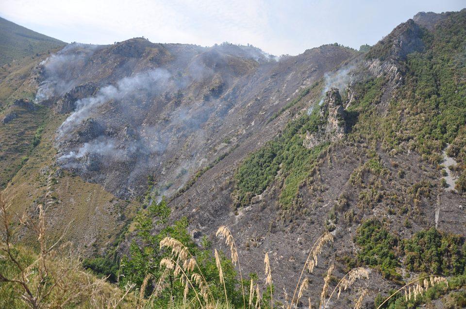 """""""La Calabria brucia"""", proclamiamo un mese di lutto (e di riflessione) nazionale"""