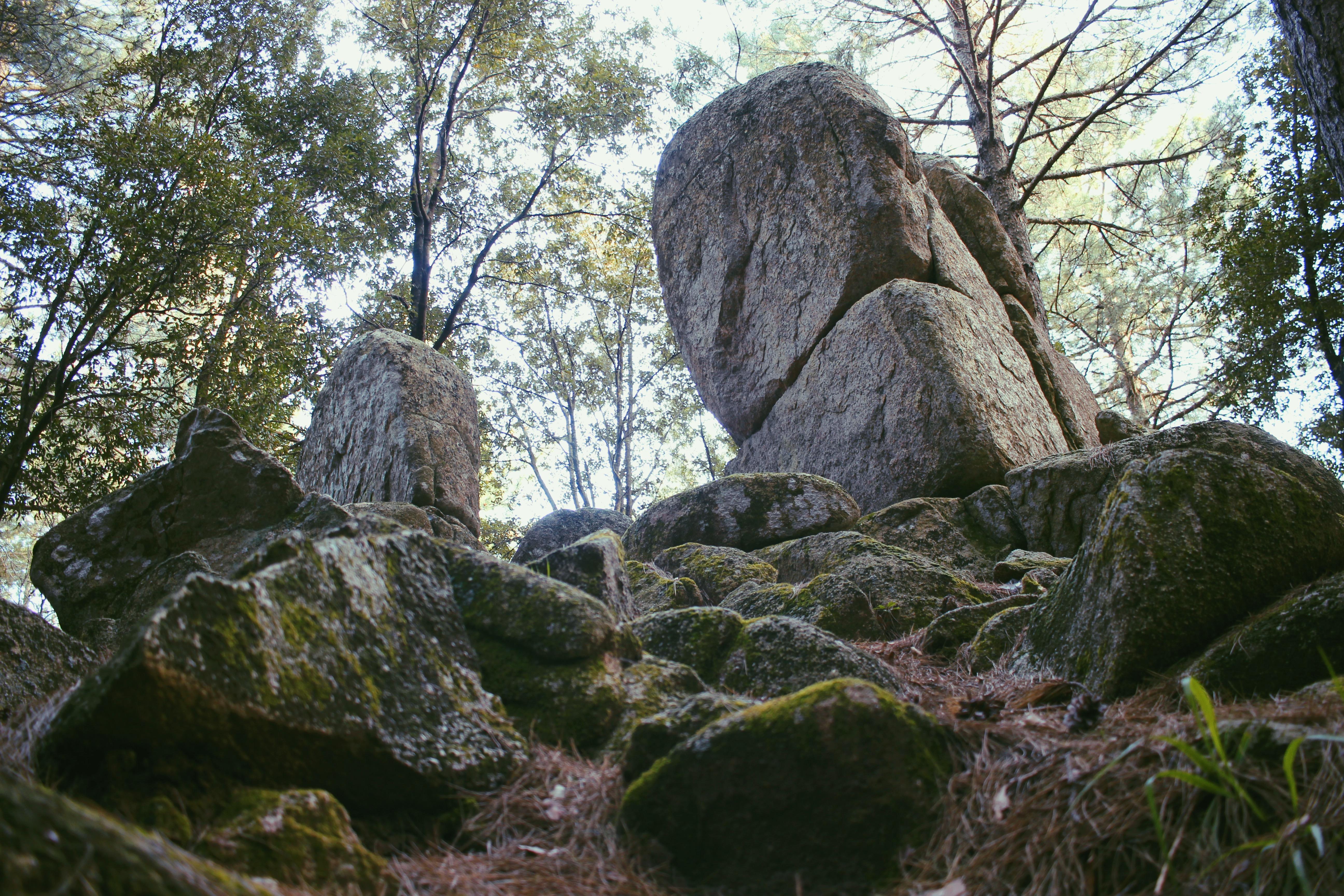 I Megaliti di Nardodipace (VV) o di quanto è immensa l'umanità