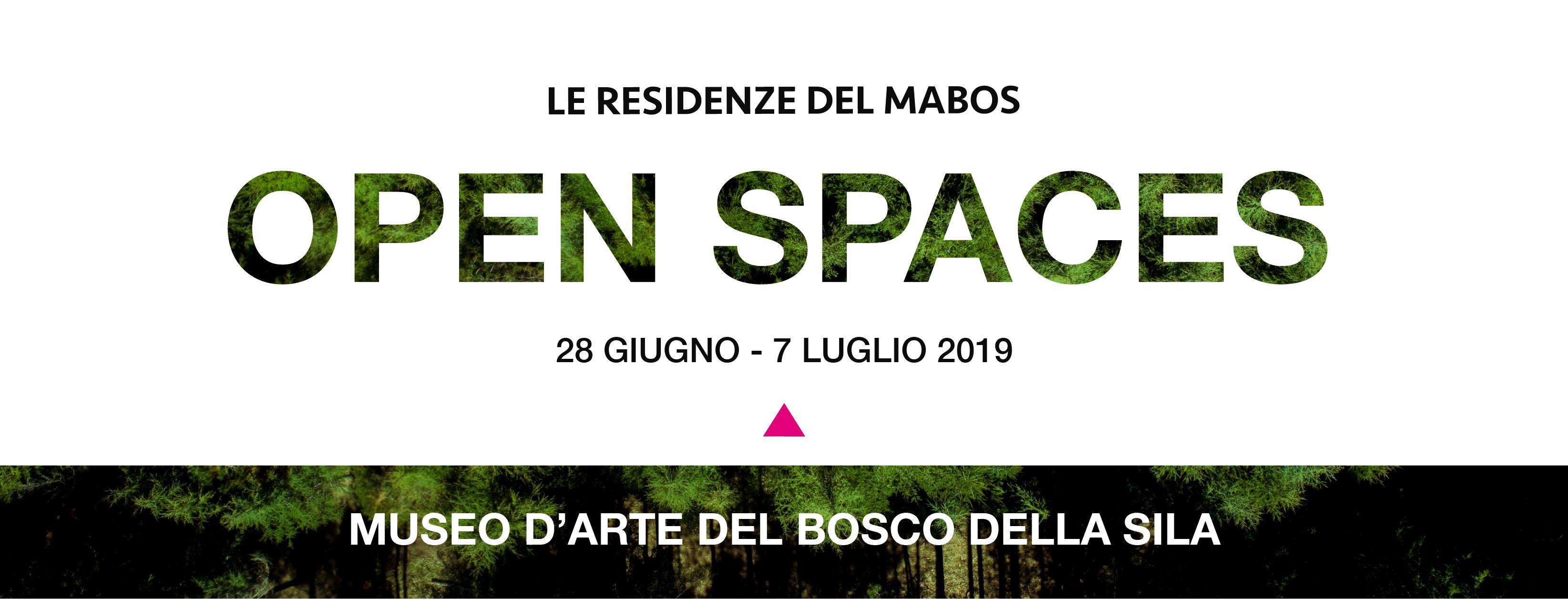 Al via le residenze artistiche del Mabos – Museo d'Arte del Bosco della Sila, l'evento conclusivo il 7 luglio