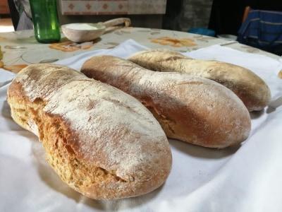 """""""Fate il pane per la prima volta"""", come essere felici ai tempi di Covid19"""